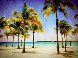 Tropical Paradise by Izzie-Hill