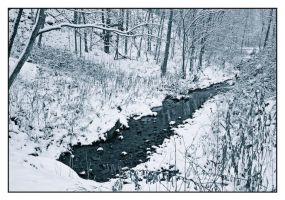 Snow creek.L1010012, with story by harrietsfriend