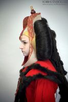 Amidala Throne Room Invasion costume profile by RebelAllianceBarbie