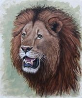 Lion Study. Oil on panel. by painterman33