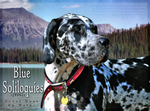 Blue Soliloquies by hlpedin