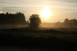 12-08-01 Sunrise 6 by Herdervriend