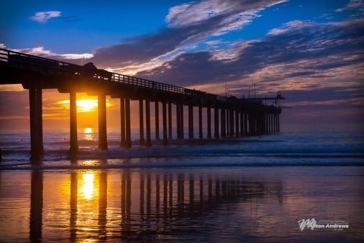 Scripps Pier by andmil