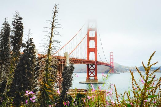 Golden Gate Bridge by sican