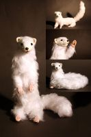 Poseable ferret doll by shortige