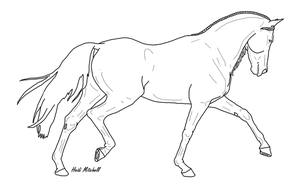 Dressage Horse Trot 2 by ThreeHoundsGraphics