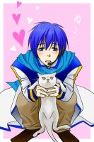 CAT SHIELD:KAITO VOCALOID by SABAKO-URUME