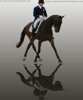 Bay Horse Dressage Graphic by kdaigler