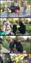 Toothless On Halloween Tour by TheBandicoot