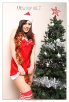 Christmas Card 02 by 365erotic