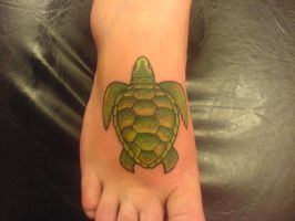 Turtle on Foot by Shipht