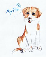 Ayita contest entry by naomithewolf