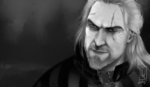 Geralt by LiLaiRa