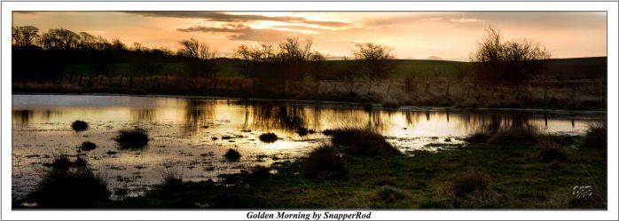 Golden Morning by SnapperRod