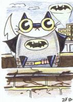 Batman funny cat by KingZoidLord