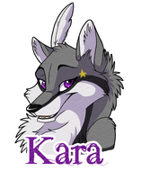Kara Badge by WindWo1f