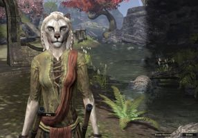 Sweetberry in ESO beta by Twilightberry
