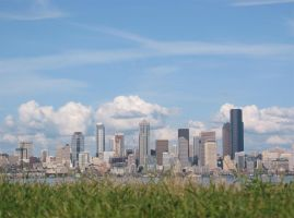 grassy seattle by grubygrub