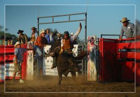 Bull Rider by WeezyBlue