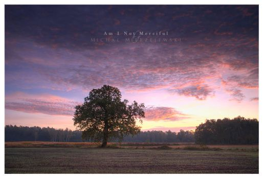 Am I Not Merciful by werol