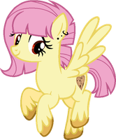 Tough Cookie's Official Debut by BlueRainiPony