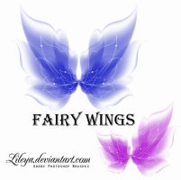 Fairy Wings by Lileya