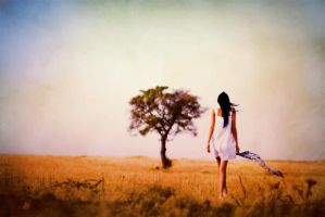 s xx 48 by metindemiralay