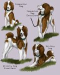 Prunelle Obedience Titles by barbed-heart