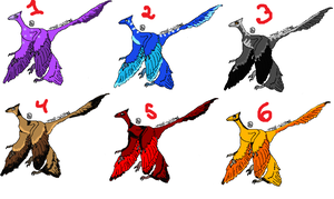 Free Microraptor adopts OPEN by wolf-wishes