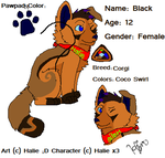 Black's Design and Breed -Need Feedback!- by EspyTheRussian
