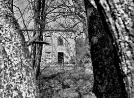 The old place by BusterBrownBB