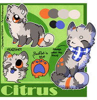 :Citrus Reference Sheet: by PrePAWSterous
