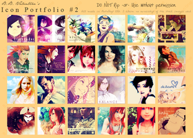 Icon Portfolio - 2 by Blackbird97