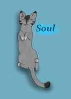 Soul, my Sweetheart by Tomahawked