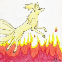 Through the Flames by Wolf-mutt