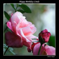 Happy Birthday Linda by David-A-Wagner