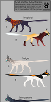 acid spitter V2 adopt sheet Round 2 [closed] by DemonML