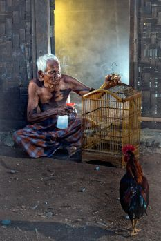 Grandpa and His Bird by Vanquist