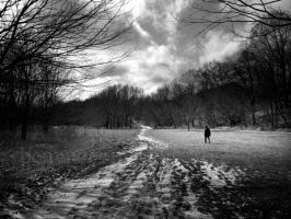 Erindale 012 by shroudedpicture