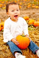 Pumpkin Patch 2 by BertLePhoto