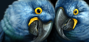 Hyacinth Macaws by Lahvorre