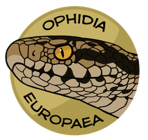 Ophidia Europaea by jrtracey