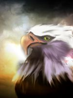 Eagle Digital Painting by CapriciousSprite