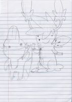 lol skymin and my friends' mudkip by Aqws7