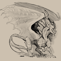 dragon sketch by Foslo