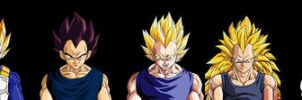 Budokai versions of Vegeta by kibasennin