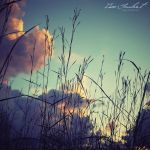 Quiet my Soul by IsacGoulart