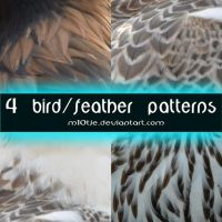4 Feather Pattern02 by M10tje