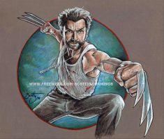 Wolverine (2014) by scotty309