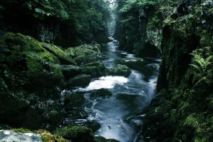 fairy glen by zaphod66
